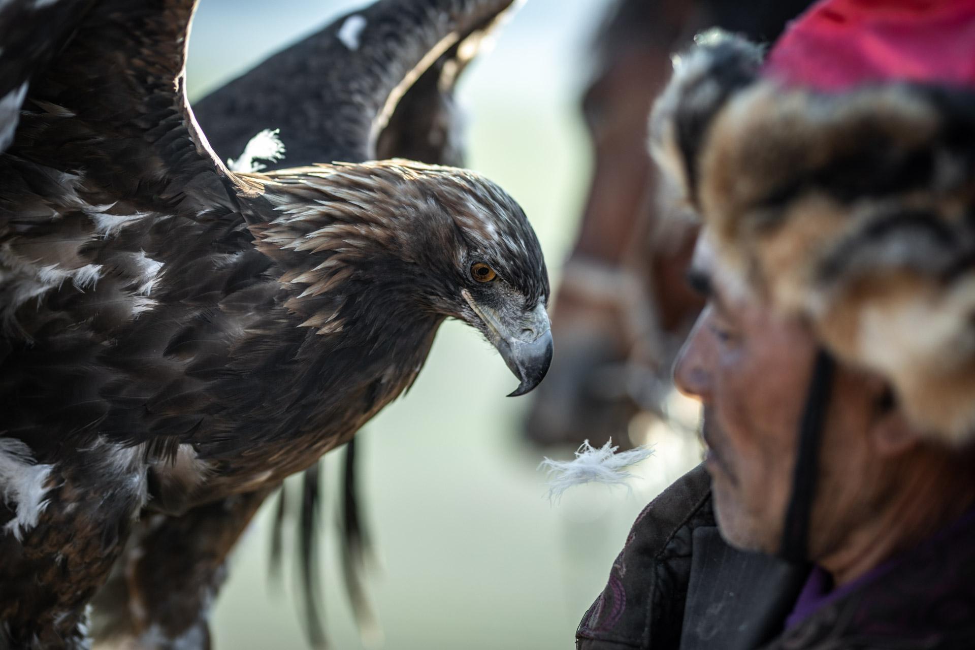 siweiss-outdoor-eaglehunters-mongolia-Fotograf-Salzburg